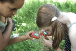 Kinder im Klassenzimmer vor zwei Gemüsehochbeeten